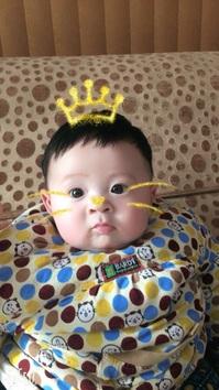 童星刘明熙